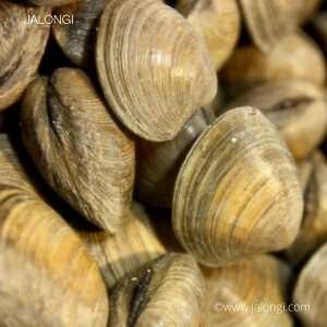 Yellow Clam with shell  (500gm Pack) *NEW*